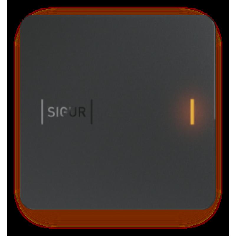 Считыватель Sigur MR1